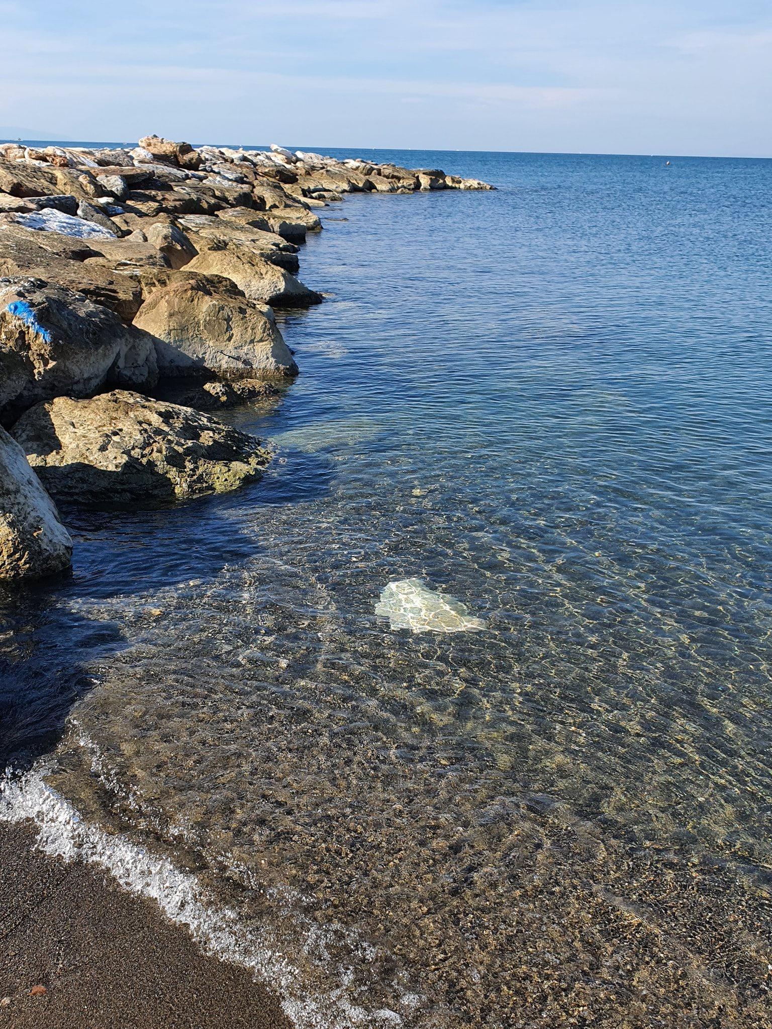 stabilimento balneare cecina mare